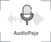 Audio paja